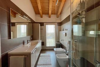 Il bagno principale è molto luminoso e include una doccia di ampie dimensioni. Veneto PD Trebaseleghe