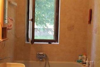 Il pavimento è piastrellato, il bagno è luminoso Lazio VT San Lorenzo nuovo