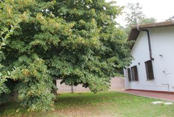 Il giardino è con erba Lazio VT San Lorenzo nuovo