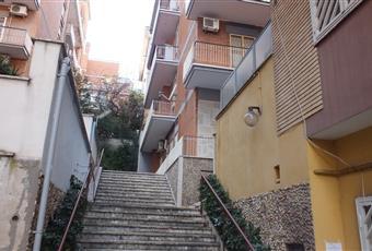 Foto ALTRO 5 Lazio LT Aprilia