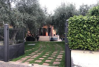Il giardino è con erba innaffiata da impianto di irrigazione. Vi sono BBQ, acquaio e doccia solare esterna. Lazio VT Montalto di Castro