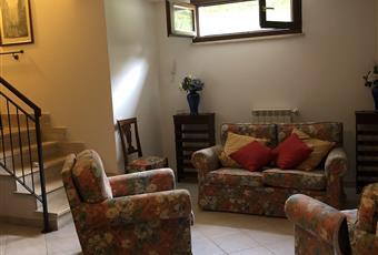 Seminterrato con due ampie finestre  Lazio VT Montalto di Castro