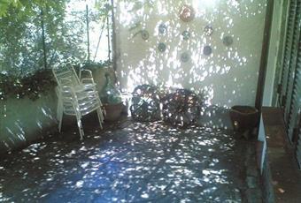 Foto ALTRO 8 Liguria SV Testico