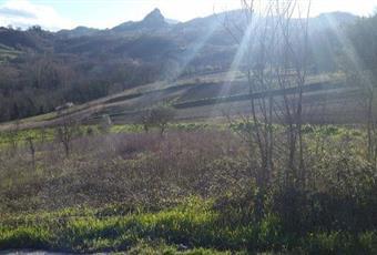 Foto ALTRO 2 Campania BN Campoli del Monte Taburno