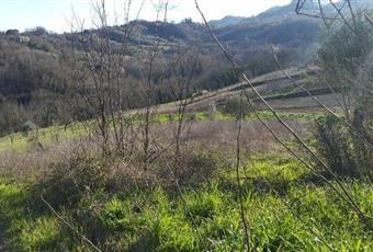 Foto ALTRO 5 Campania BN Campoli del Monte Taburno