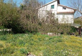 Il giardino è con erba Abruzzo PE Loreto Aprutino
