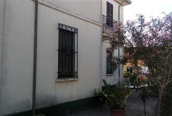 Foto ALTRO 11 Emilia-Romagna RA Bagnacavallo