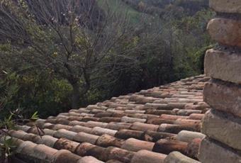 Foto GIARDINO 12 Emilia-Romagna RN Montefiore Conca