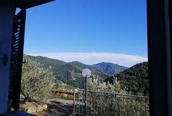 Foto ALTRO 7 Liguria GE Recco