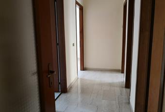 l'intero ambiente è stato ri-pitturato con pittura fondo bianco, pronto per essere decorato con colori a scelta dell'acquirente. Calabria RC Reggio di Calabria