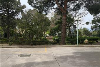 Giardino condominiale  recintato; accesso tramite cancello automatico. Al interno  due posti auto di proprietà esclusiva. Calabria RC Reggio di Calabria