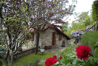 Foto GIARDINO 5 Piemonte AL Carrega ligure