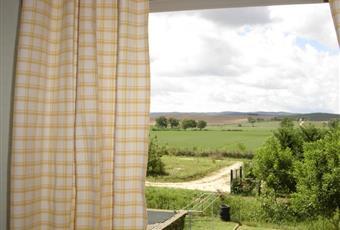 Foto GIARDINO 3 Toscana SI Monteroni D'arbia