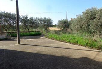 Foto ALTRO 8 Sicilia TP Castelvetrano