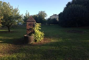 Il giardino è con erba Piemonte AL Gabiano