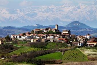Foto ALTRO 2 Piemonte AL Conzano
