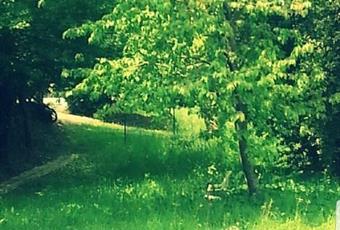 Il pavimento è di parquet, il salone è con camino, il giardino è con erba, il pavimento è piastrellato, luminoso Marche AP Grottammare