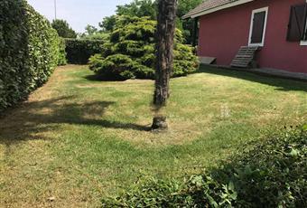 Il giardino è con erba Piemonte TO Frossasco
