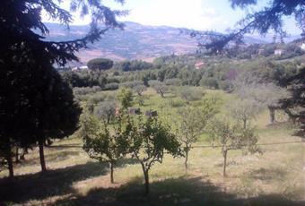 Foto ALTRO 6 Campania AV Montecalvo Irpino