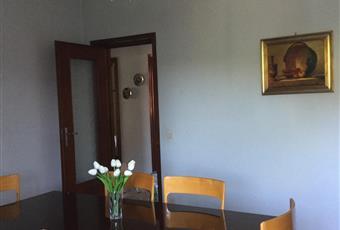 Salone ampio e luminoso. Piemonte AL Castelnuovo Scrivia