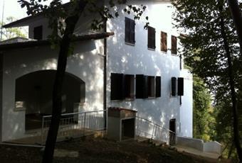 Foto ALTRO 3 Veneto VI Longare