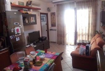 Foto CUCINA 2 Lazio RM Monte Porzio Catone