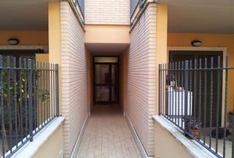 Foto ALTRO 6 Lazio RM Monte Porzio Catone