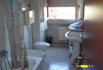 Il pavimento è piastrellato, il pavimento è di parquet, il bagno è luminoso Marche PU Urbino