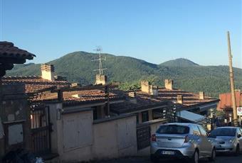 Foto ALTRO 4 Lazio RM Rocca Priora