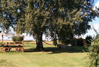 Il giardino è con erba Emilia-Romagna FE Vigarano Mainarda