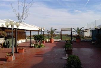 Foto ALTRO 2 Abruzzo TE Silvi