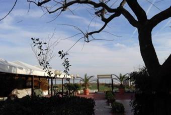 Foto ALTRO 3 Abruzzo TE Silvi