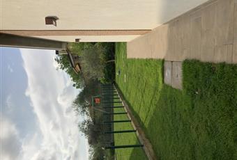 Il giardino è con erba Veneto TV Treviso