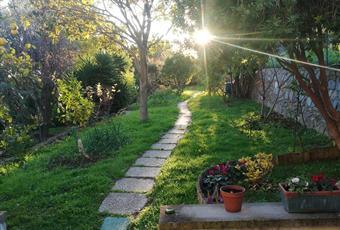 Il giardino è con erba Liguria IM Bordighera
