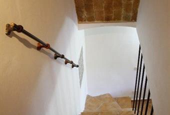 Foto ALTRO 11 Abruzzo AQ Ovindoli