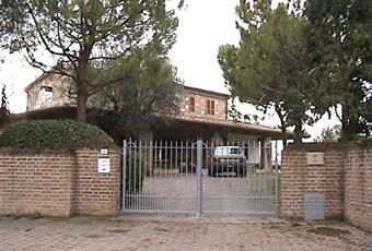 Il salone è con travi a vista, il salone è con camino Marche PU Pesaro