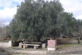Foto ALTRO 7 Puglia BR Villa Castelli