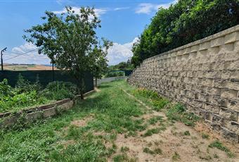 Il giardino è con erba Marche PU Tavullia