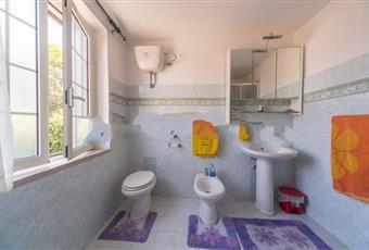 Il bagno è luminoso, il pavimento è piastrellato Lazio RI Monteleone Sabino