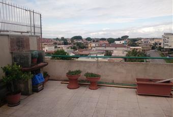 Foto TERRAZZO 3 Lazio RM Nettuno
