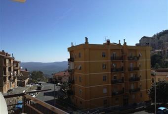 Foto ALTRO 7 Lazio RM Tolfa