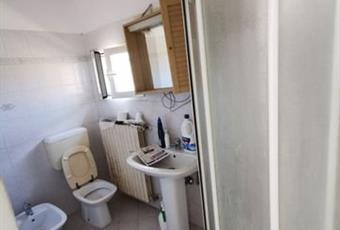 Il bagno è luminoso, il pavimento è piastrellato Emilia-Romagna FE Ferrara