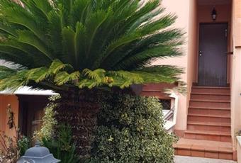 Foto ALTRO 11 Lazio LT Sermoneta