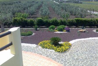 Foto GIARDINO 3 Sicilia AG Menfi