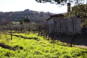 Foto ALTRO 8 Campania BN Sant'Agata De'Goti