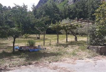 Il giardino è con erba Campania AV Senerchia
