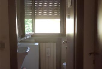 Bagno di servzio con lavatrice e doccia Emilia-Romagna RE Reggio nell'Emilia