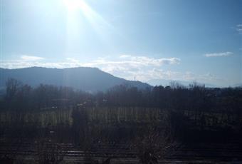 Foto ALTRO 5 Lazio FR Arce
