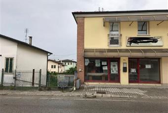 Foto ALTRO 2 Veneto VE Campagna Lupia