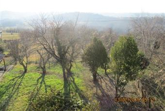 Foto GIARDINO 2 Piemonte AL Villadeati